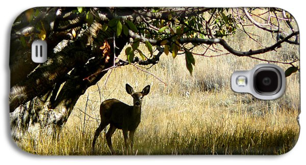 Wild Orchards Galaxy S4 Cases - Doe in the Orchard Galaxy S4 Case by Lisa Knechtel