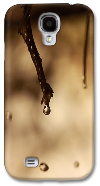 Tree Roots Pyrography Galaxy S4 Cases - Drop Galaxy S4 Case by Alon Meir