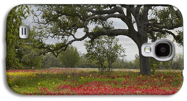Landscapes Photographs Galaxy S4 Cases - Drummonds Phlox Meadow Near Leming Texas Galaxy S4 Case by Tim Fitzharris