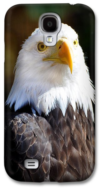 Marty Koch Galaxy S4 Cases - Eagle 14 Galaxy S4 Case by Marty Koch