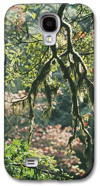 Epiphyte Galaxy S4 Cases - Epiphytic Moss Galaxy S4 Case by Doug Allan