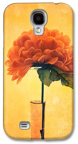 Orange Photographs Galaxy S4 Cases - Estillo - 01i2t03 Galaxy S4 Case by Variance Collections