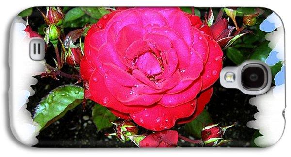Floribunda Galaxy S4 Cases - Europeana Roses And Raindrops Galaxy S4 Case by Will Borden