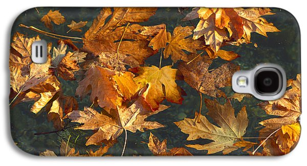 Autumn Leaf On Water Galaxy S4 Cases - Fall Maple Leaves on Water Galaxy S4 Case by Sharon  Talson
