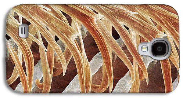 Hirundo Galaxy S4 Cases - Feather Barbules, Sem Galaxy S4 Case by Power And Syred