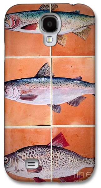 Trout Ceramics Galaxy S4 Cases - Fish Mural On Terracotta Tiles Galaxy S4 Case by Andrew Drozdowicz