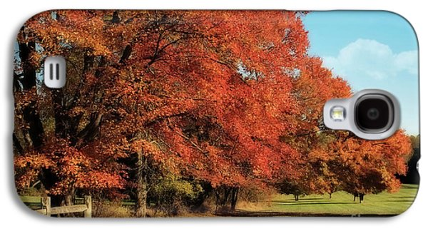 Autumn Landscape Digital Art Galaxy S4 Cases - Flame Trees Galaxy S4 Case by Lois Bryan