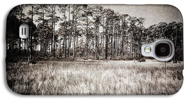 Surreal Landscape Galaxy S4 Cases - Florida Pine 2 Galaxy S4 Case by Skip Nall