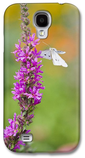 Decorative Photographs Galaxy S4 Cases - Flying Butterfly Galaxy S4 Case by Melanie Viola