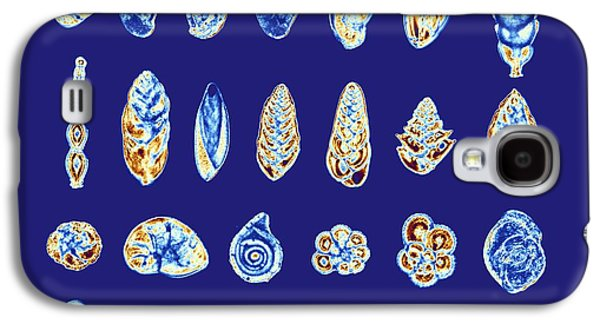 Single Cell Galaxy S4 Cases - Foraminiferans, Light Micrograp Galaxy S4 Case by Pasieka