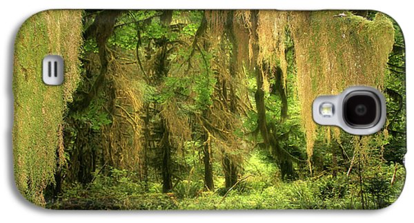 Tendrils Galaxy S4 Cases - Forest Fantasy - Quinault - Gateway to Paradise on the Olympic Peninsula WA Galaxy S4 Case by Christine Till