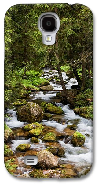 Beautiful Creek Galaxy S4 Cases - Forest Stream in Tatra Mountains Galaxy S4 Case by Artur Bogacki