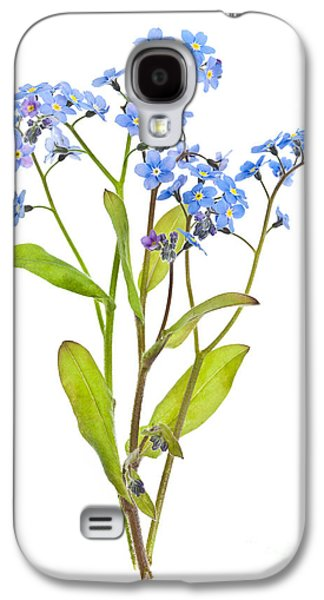 Botanical Galaxy S4 Cases - Forget-me-not flowers on white Galaxy S4 Case by Elena Elisseeva