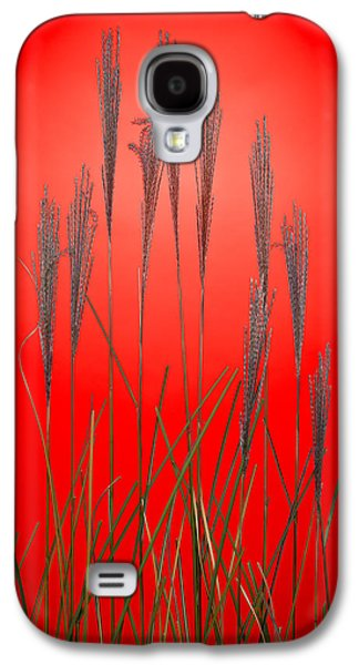 Studio Photographs Galaxy S4 Cases - Fountain Grass In Red Galaxy S4 Case by Steve Gadomski