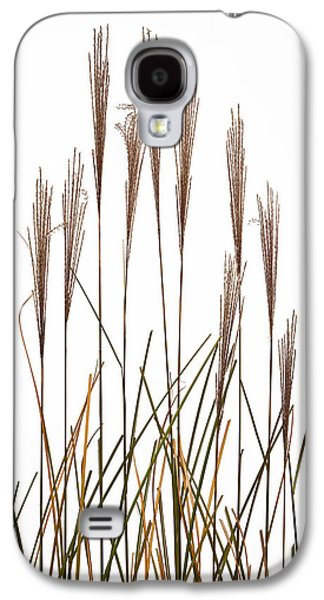 Studio Photographs Galaxy S4 Cases - Fountain Grass In White Galaxy S4 Case by Steve Gadomski