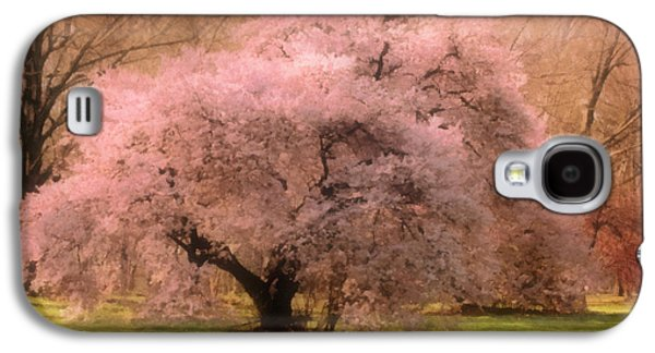 Mother Gift Galaxy S4 Cases - Four Seasons Magical Spring Galaxy S4 Case by Georgiana Romanovna