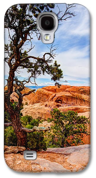 Pine Tree Galaxy S4 Cases - Framed Arch Galaxy S4 Case by Chad Dutson
