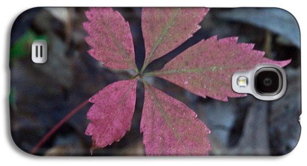 Fushia Galaxy S4 Cases - Fushia Leaf Galaxy S4 Case by Douglas Barnett