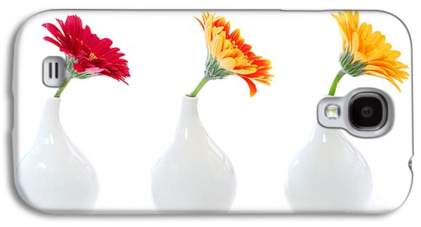 Element Photographs Galaxy S4 Cases - Gerbera flowers in vases Galaxy S4 Case by Elena Elisseeva