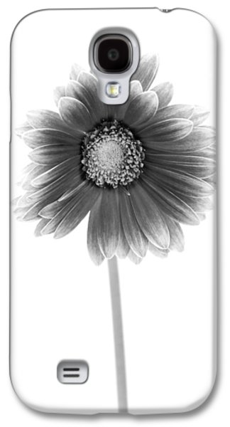 Gerbera In Black And White Galaxy S4 Case by Sebastian Musial