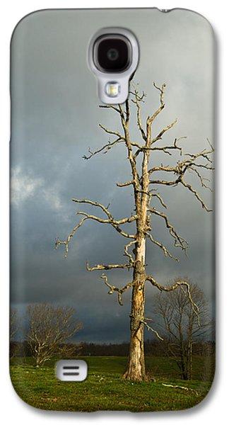Ghastly Galaxy S4 Cases - Ghost Tree Galaxy S4 Case by Douglas Barnett