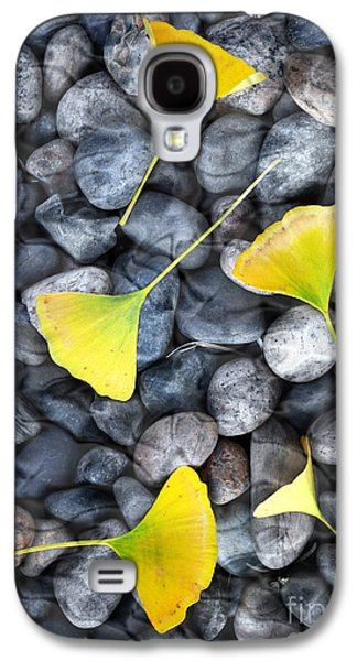 Digital Galaxy S4 Cases - Ginkgo Leaves on Gray Stones Galaxy S4 Case by Laura Iverson
