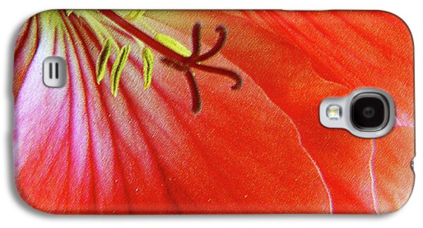 Red Geraniums Galaxy S4 Cases - Glorious Geranium Galaxy S4 Case by Ben and Raisa Gertsberg