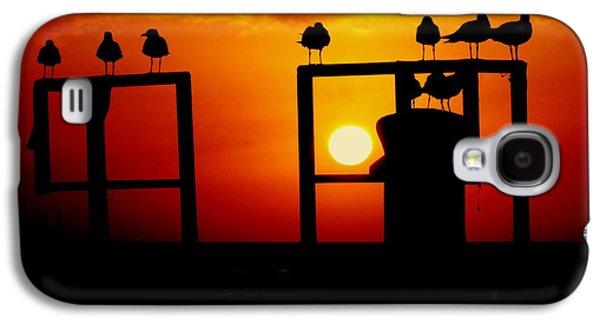 Wildlife Celebration Galaxy S4 Cases - Goodnight Gulls Galaxy S4 Case by Karen Wiles