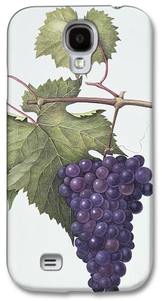 Grapes  Galaxy S4 Case by Margaret Ann Eden