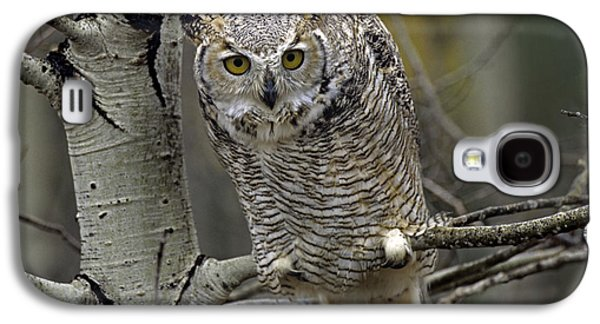 Morph Galaxy S4 Cases - Great Horned Owl Pale Form Kootenays Galaxy S4 Case by Tim Fitzharris