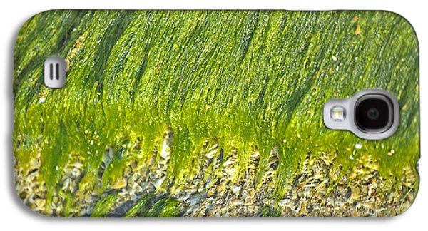 Alga Galaxy S4 Cases - Green Algae On Rock Galaxy S4 Case by Kenneth Albin