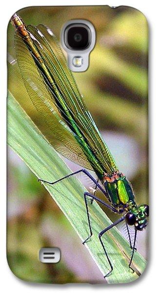 Demoiselles Galaxy S4 Cases - Green Damselfly Galaxy S4 Case by Ramona Johnston