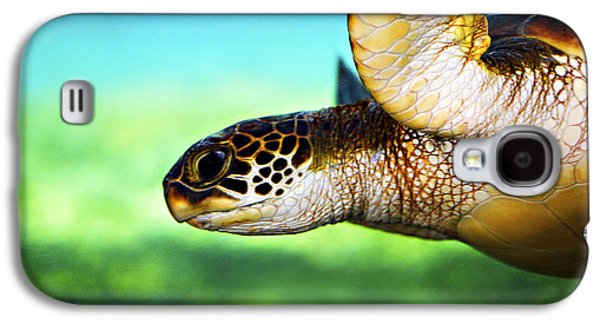 Close Galaxy S4 Cases - Green Sea Turtle Galaxy S4 Case by Marilyn Hunt