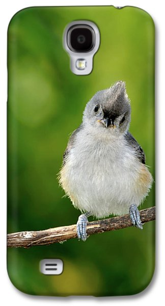 Tufted Titmouse Galaxy S4 Cases - Hello World Galaxy S4 Case by Betty LaRue