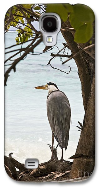 Wetlands Galaxy S4 Cases - Heron Galaxy S4 Case by Jane Rix