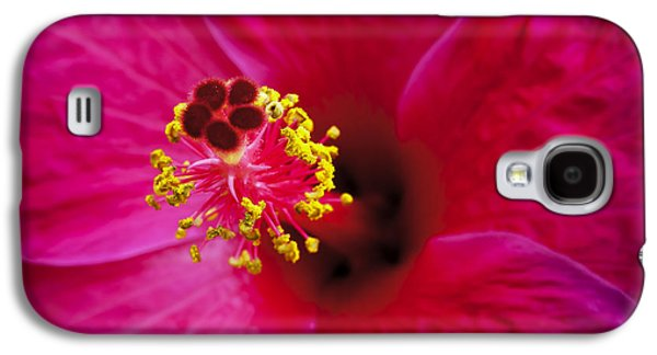 Close Focus Floral Galaxy S4 Cases - Hibiscus Macro Galaxy S4 Case by Joe Carini - Printscapes