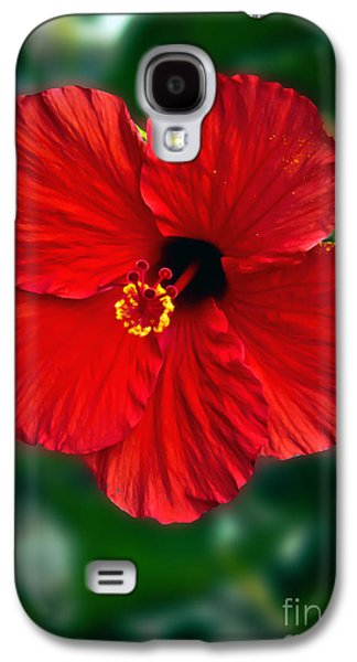 Recently Sold -  - Haybale Galaxy S4 Cases - Hibiscus Galaxy S4 Case by Robert Bales
