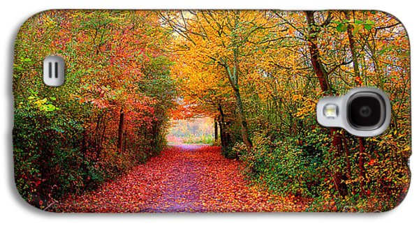 Autumn Landscape Galaxy S4 Cases - Hope Galaxy S4 Case by Photodream Art