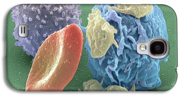 Component Photographs Galaxy S4 Cases - Human Blood Cells, Sem Galaxy S4 Case by Steve Gschmeissner