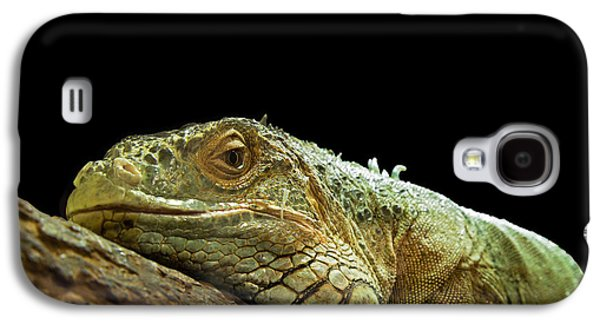 Chameleon Galaxy S4 Cases - Iguana Galaxy S4 Case by Jane Rix