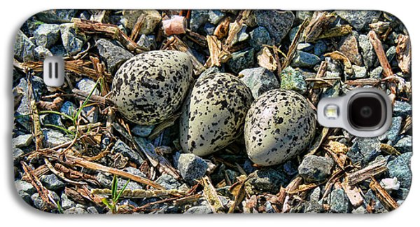 Killdeer Bird Eggs Galaxy S4 Case by Jennie Marie Schell