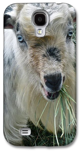 Goat Digital Art Galaxy S4 Cases - King of the Road Galaxy S4 Case by Gwyn Newcombe