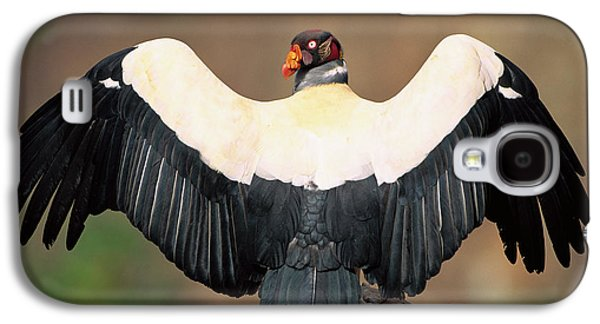 Papa Galaxy S4 Cases - King Vulture Sarcoramphus Papa Sunning Galaxy S4 Case by Pete Oxford