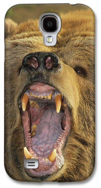 Growling Galaxy S4 Cases - Kodiak Bear Ursus Arctos Middendorffi Galaxy S4 Case by Matthias Breiter