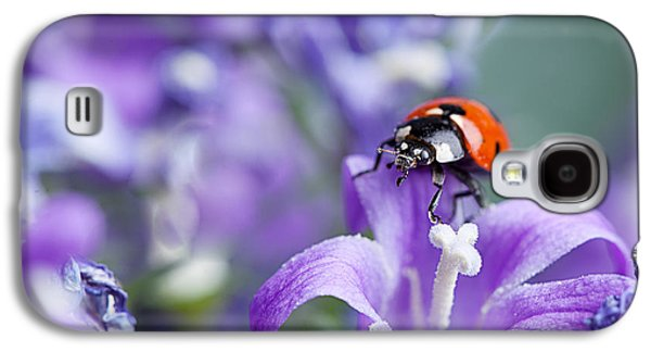 Intense Galaxy S4 Cases - Ladybug and Bellflowers Galaxy S4 Case by Nailia Schwarz