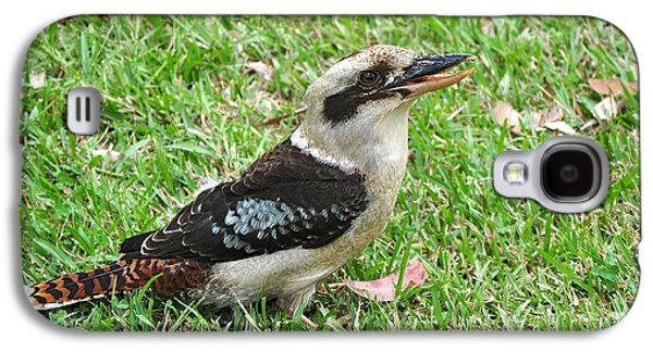 Laughing Kookaburra Galaxy S4 Case by Kaye Menner