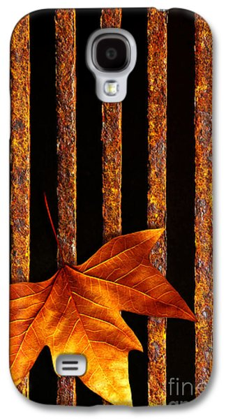 Drain Galaxy S4 Cases - Leaf in drain Galaxy S4 Case by Carlos Caetano