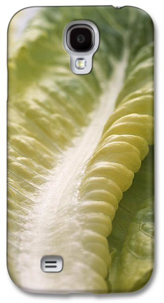 Romaine Galaxy S4 Cases - Lettuce Leaf Galaxy S4 Case by Sheila Terry