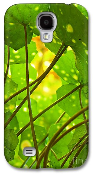 Nature Abstracts Galaxy S4 Cases - Ligularia Tussilaginea Galaxy S4 Case by Carlos Caetano