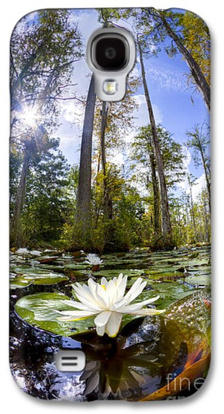 Lily Pad Flower In Cypress Swamp Forest Galaxy S4 Case by Dustin K Ryan
